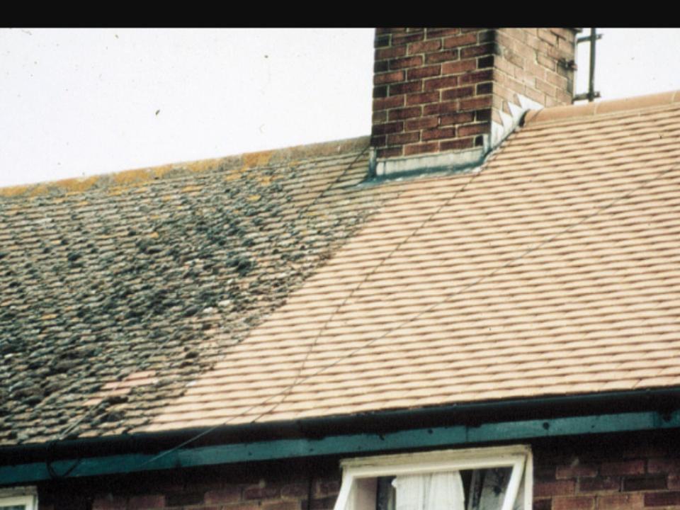 moss-removal-swindon